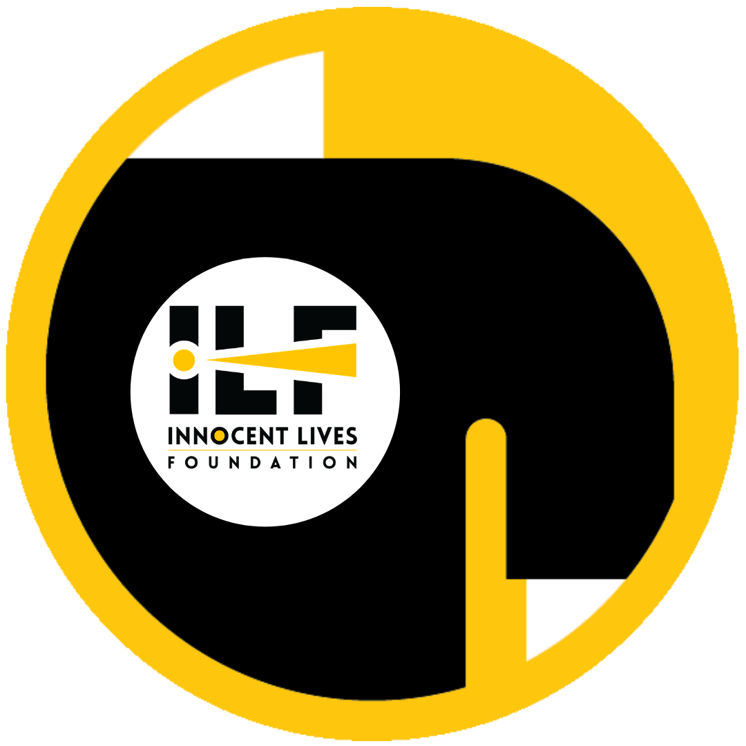 ILF Gear Icon